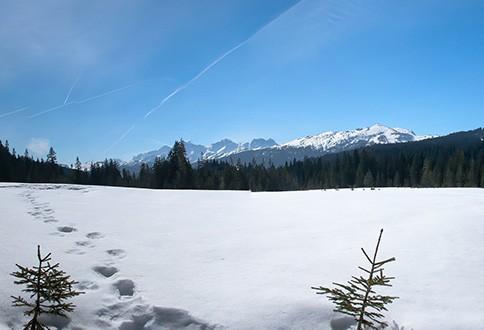 winter-1119947_1920