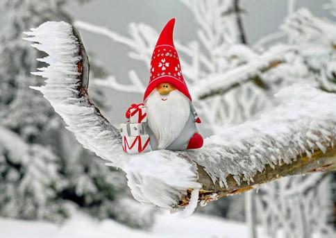 Rucksack-auf-und-ab-in-die-Natur-alternative-Ideen-zu-Weihnachten