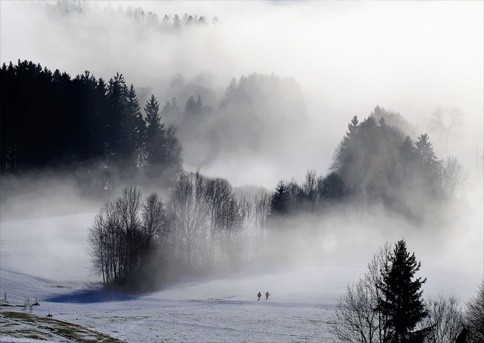 fog-3041336_1920
